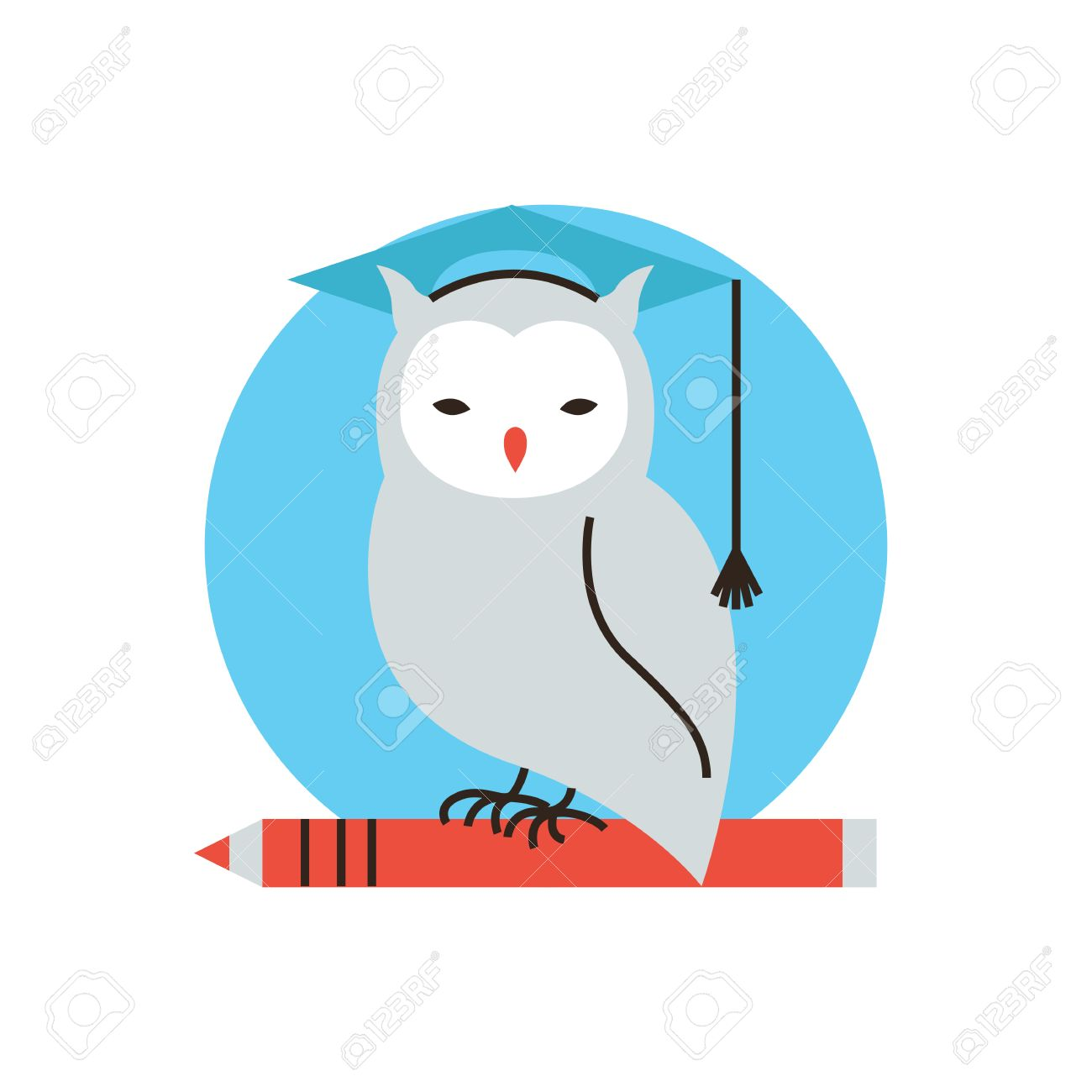 Thin Line Icon With Flat Design Element Of Wise Owl, University ...