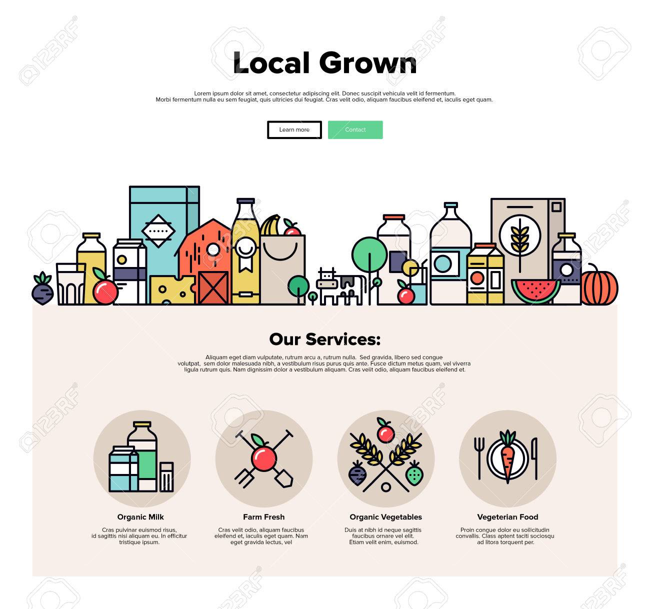 One page web design template with thin line icons of local farm grown vegetables, natural organic food, eco friendly seasonal products. Flat design graphic hero image concept, website elements layout. - 49564015