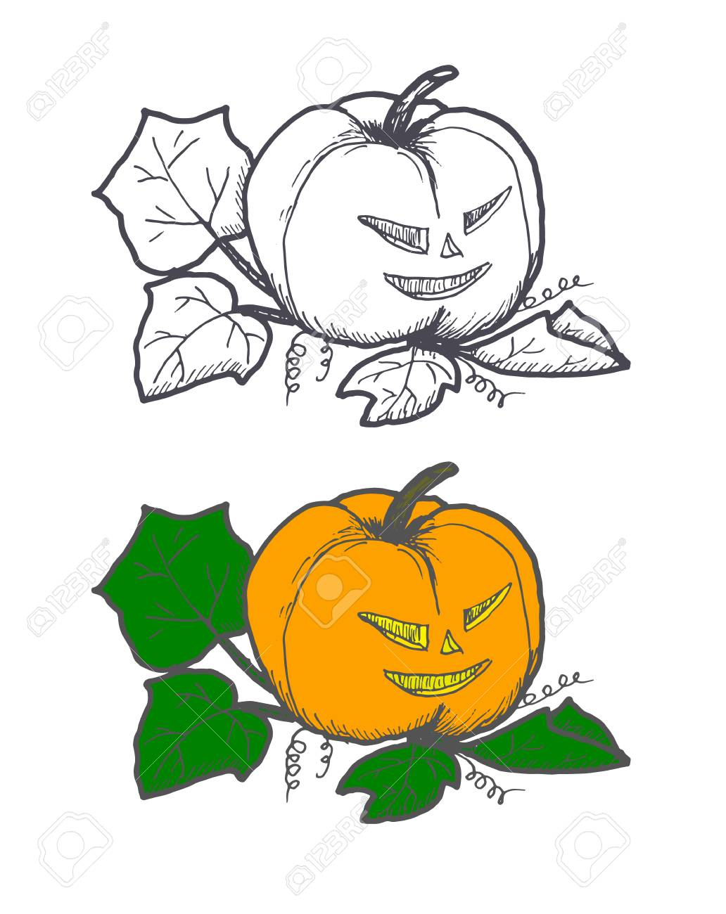 Hand Drawn Doodle Halloween Pampkin Black Pen Objects And Color