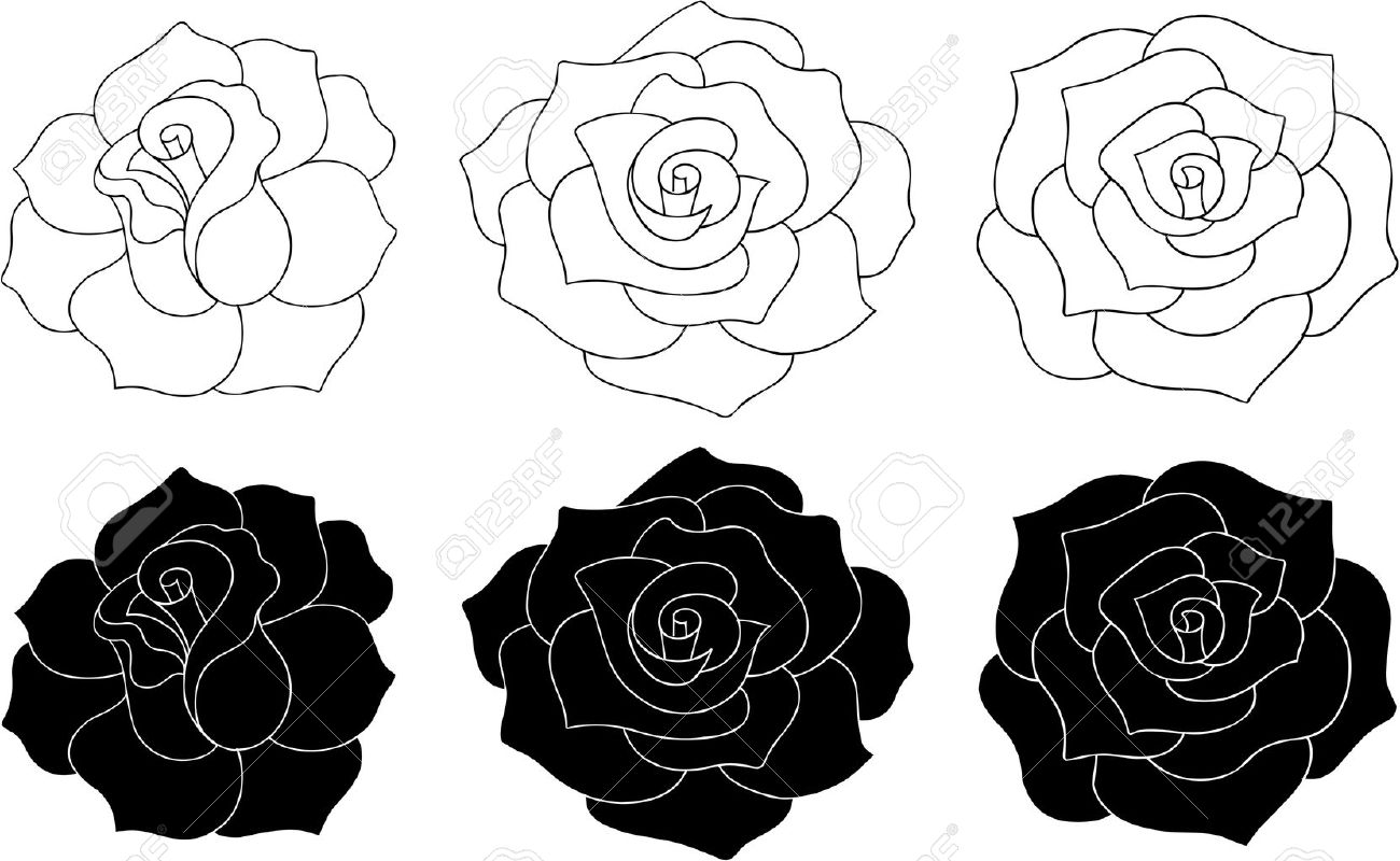 roses vector illustration silhouettes and outlines royalty free rh 123rf com vector rose flower vector rose free