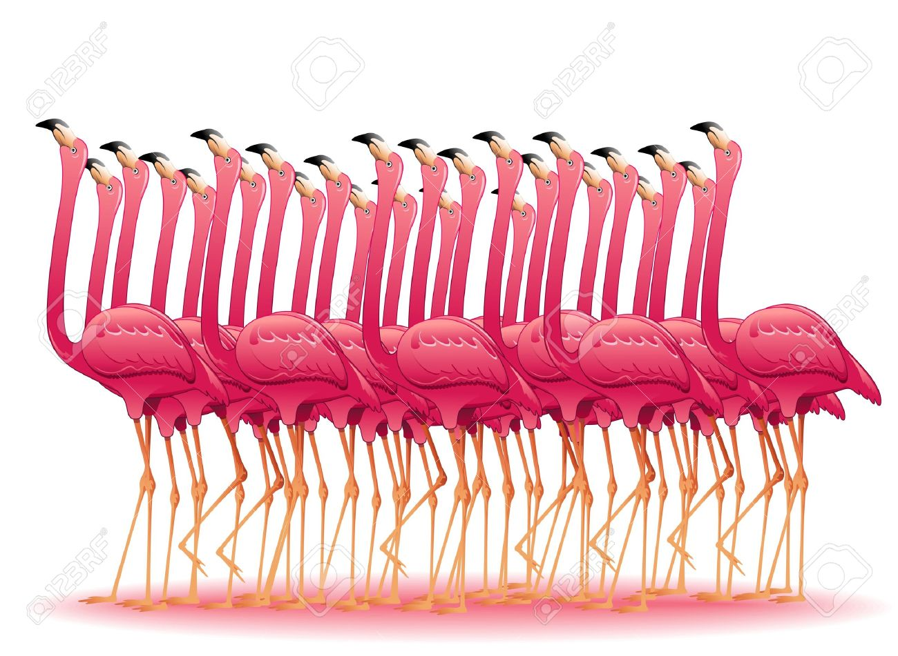 Pink Flamingos Group Stock Vector - 19136428