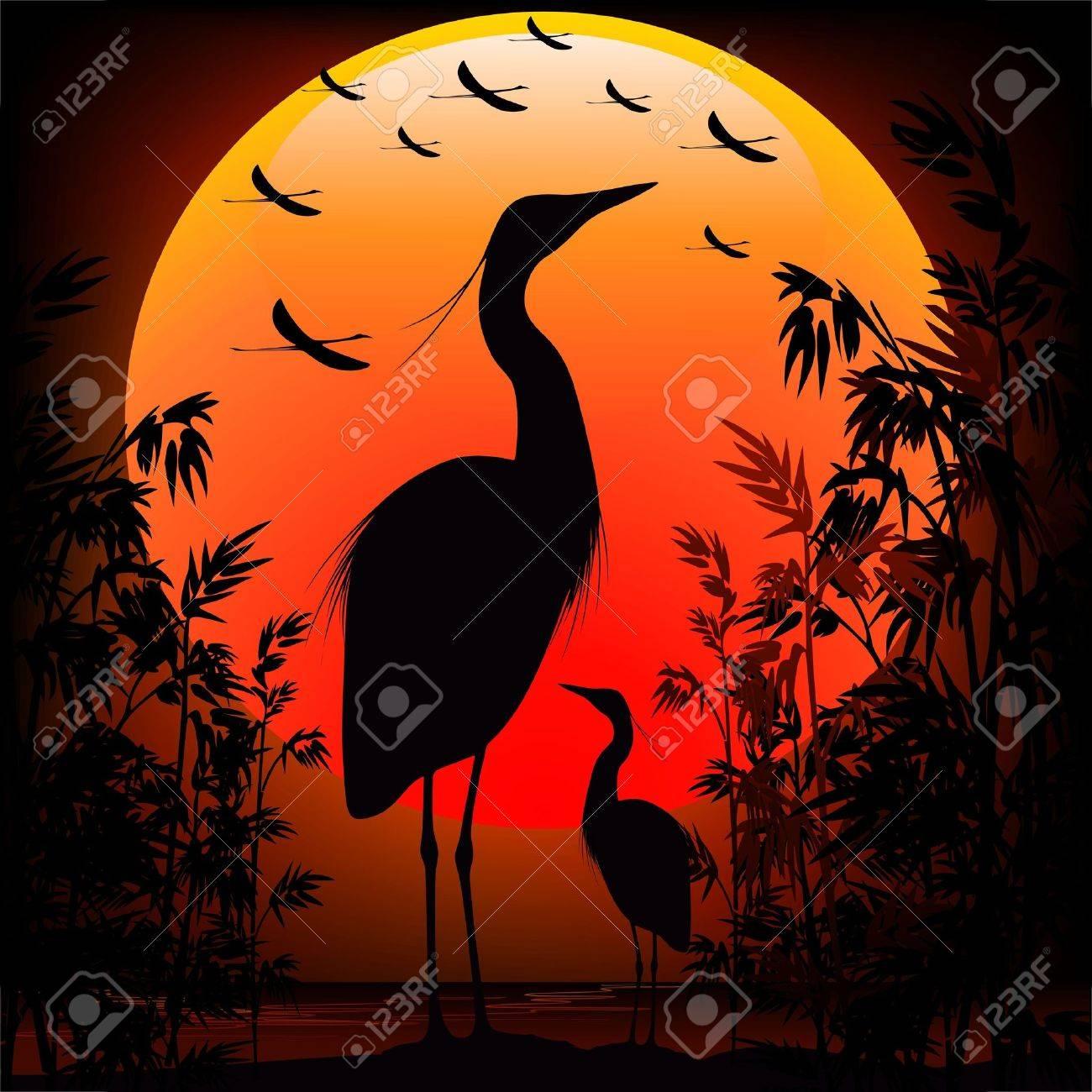 Heron Shape on Stunning Sunset Stock Vector - 19684756