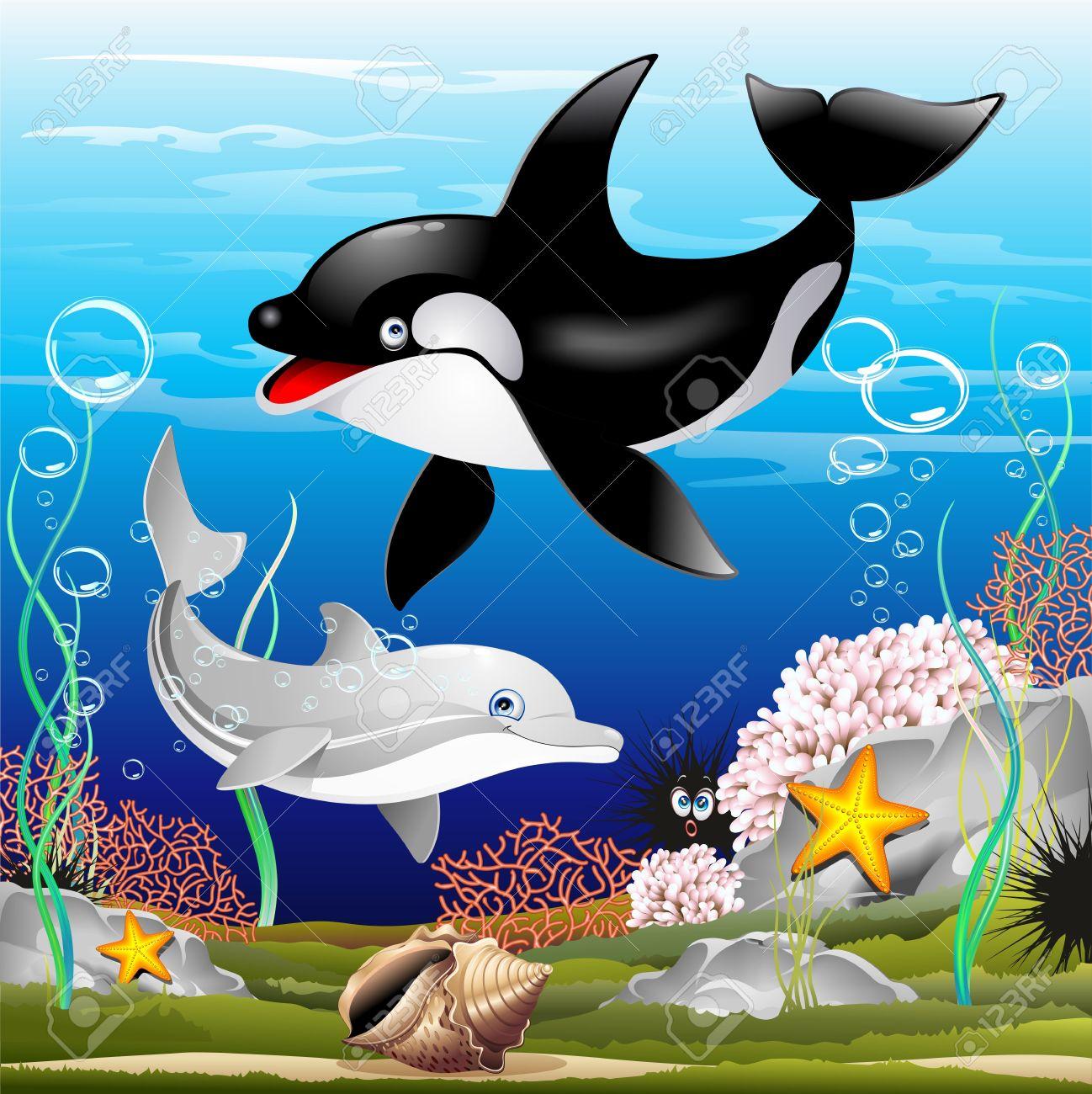 Dolphin and Killer Whale Cartoon on the Ocean Stock Vector - 20282320