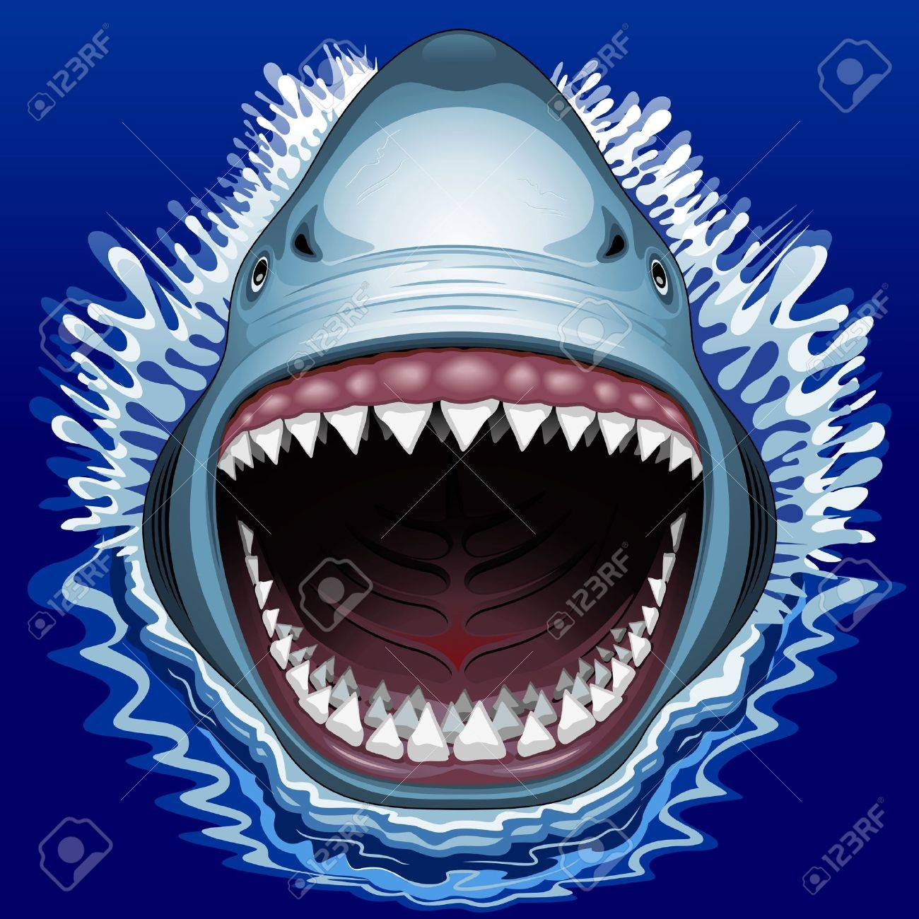 Shark Jaws Attack Stock Vector - 30557020