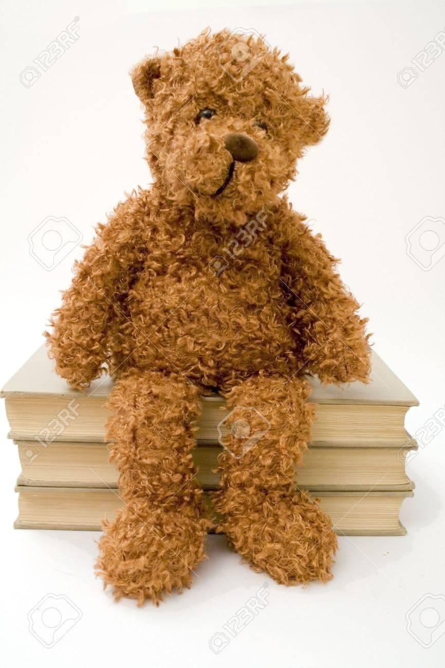 A cuddly bear sitting on three books. - 2113988