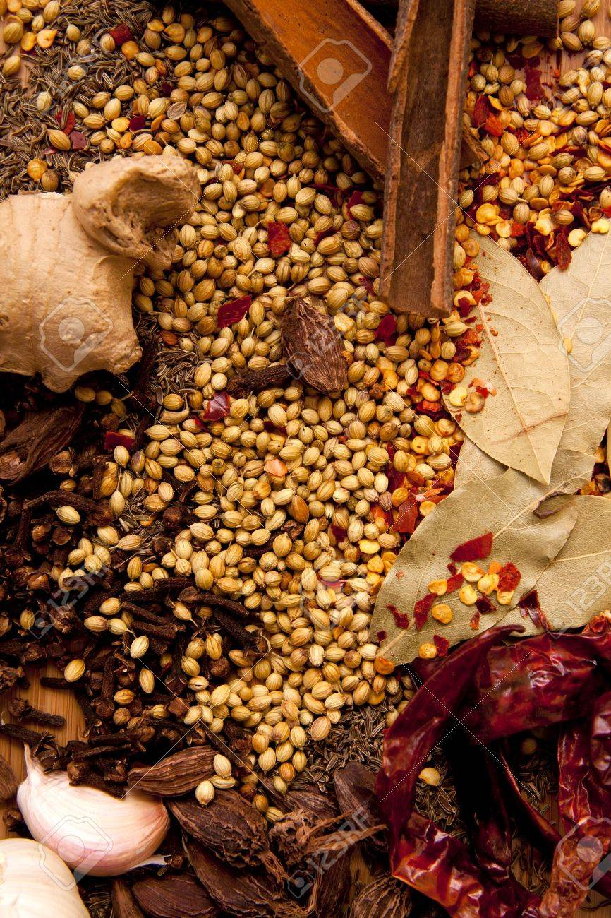 A collection of Indian spices as a food orientated background that will work well as a book cover. - 10754588