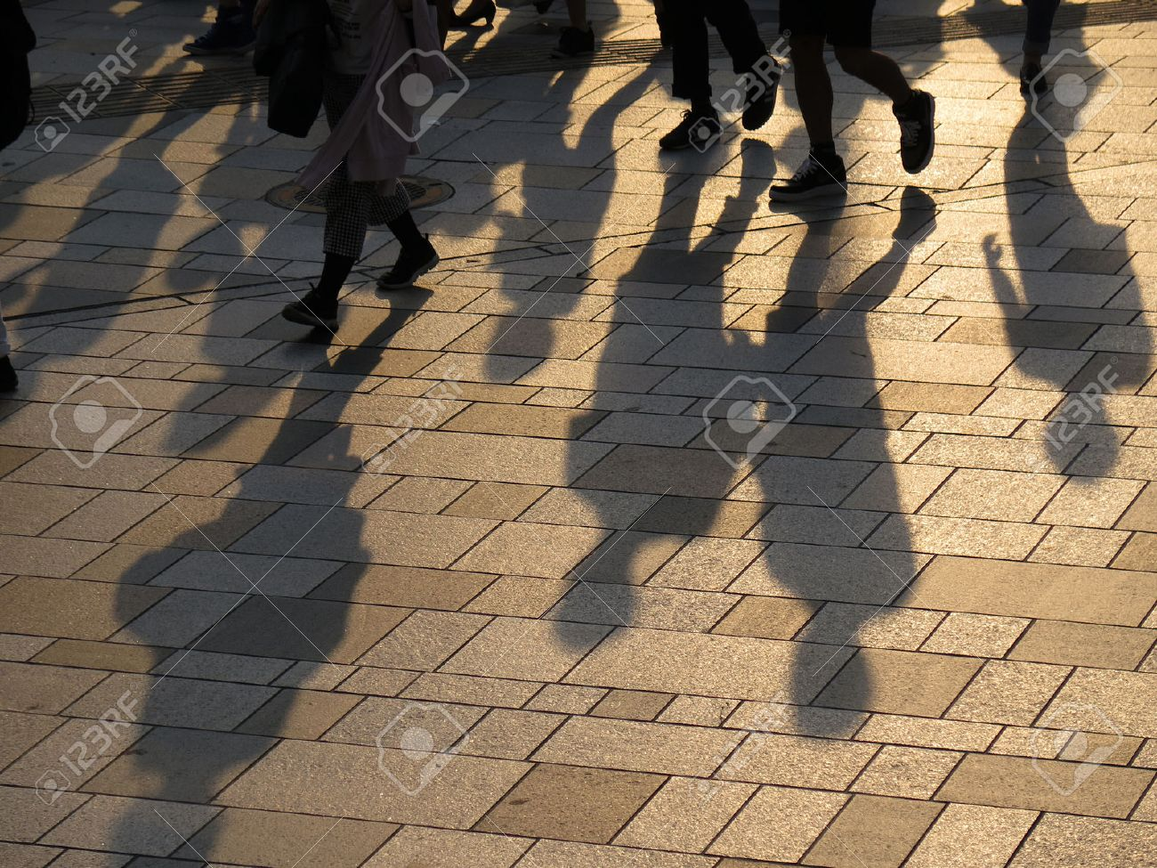 shadow of people walking together - 51827881