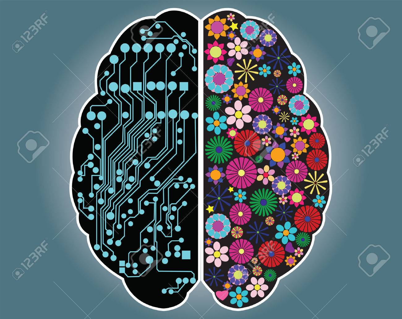 Left and right side of the brain, logic and creativity, vector Stock Vector - 24060669