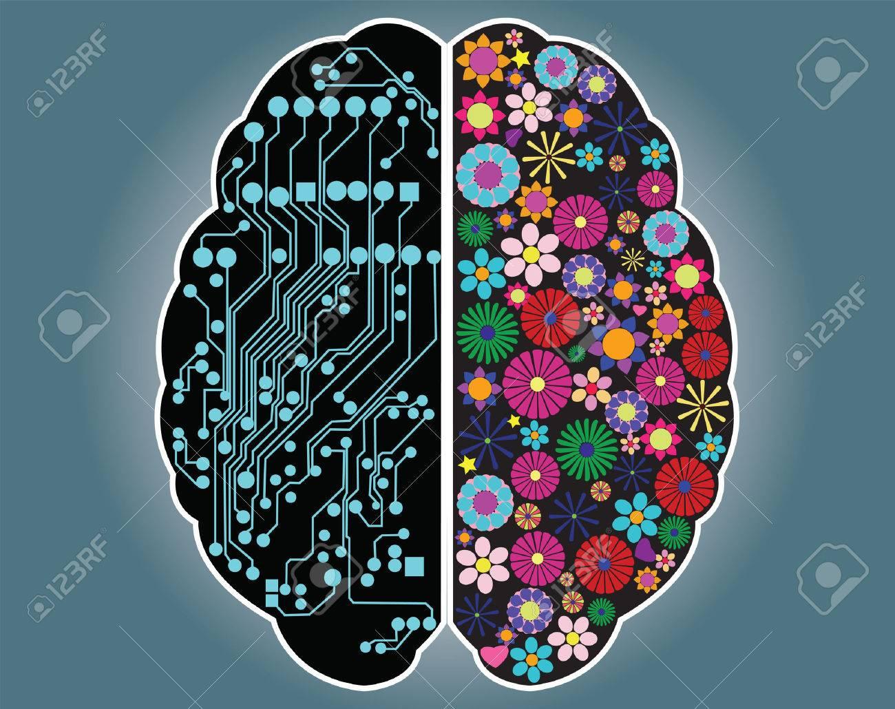 Linke Und Rechte Seite Des Gehirns, Logik Und Kreativität, Vektor ...