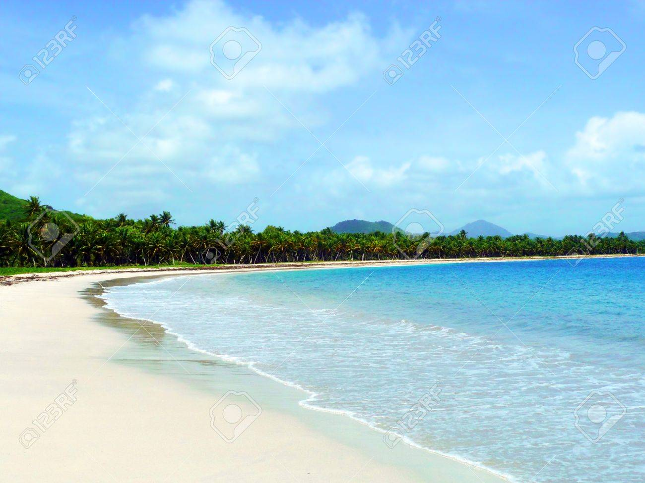 Carribean Wild Beach in Martinique Stock Photo - 13881496