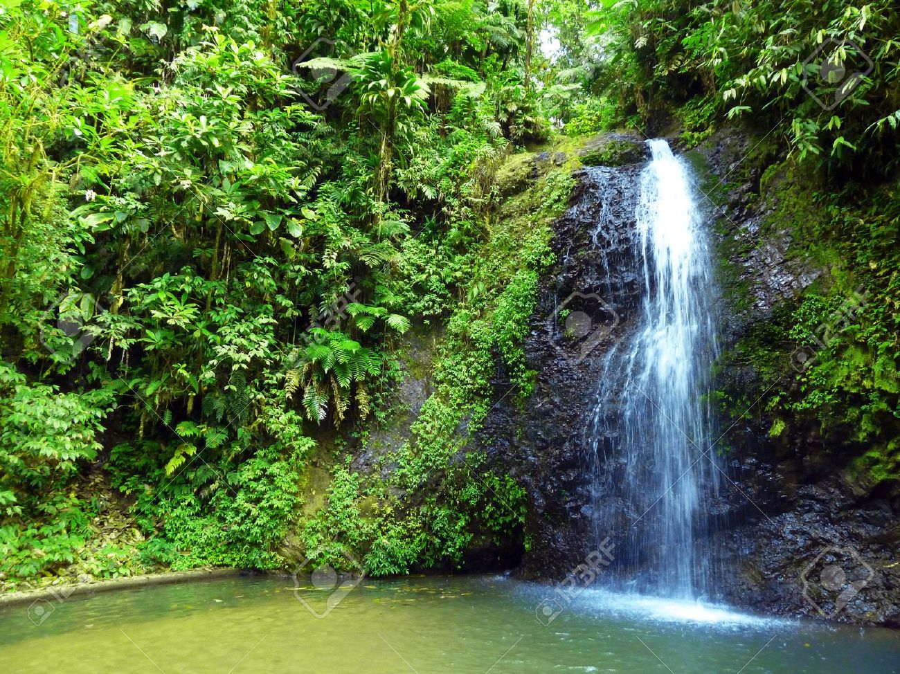Exotic Waterfalls on Rainforest Nature Stock Photo - 13896014