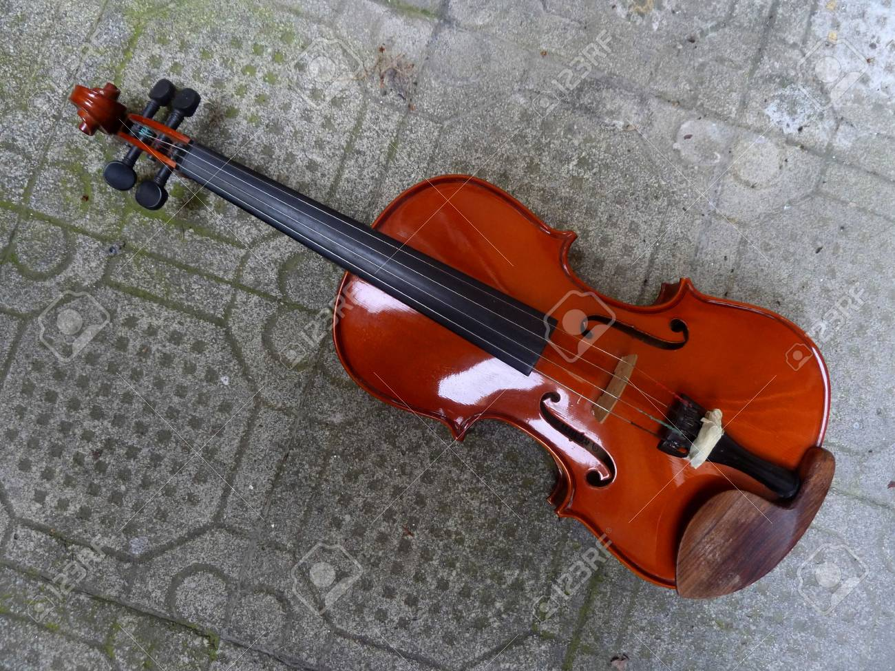 violin Stock Photo - 59351247