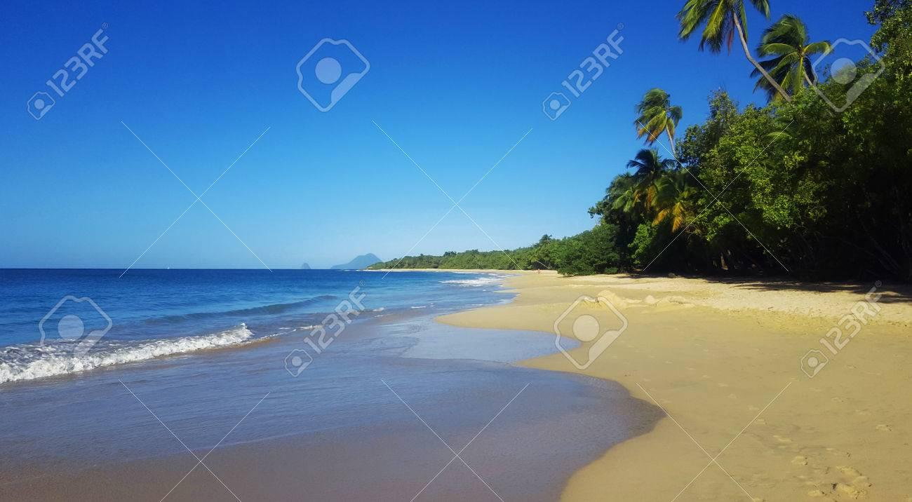 Wild Beach Exotic Caribbean Nature Stock Photo - 71014761