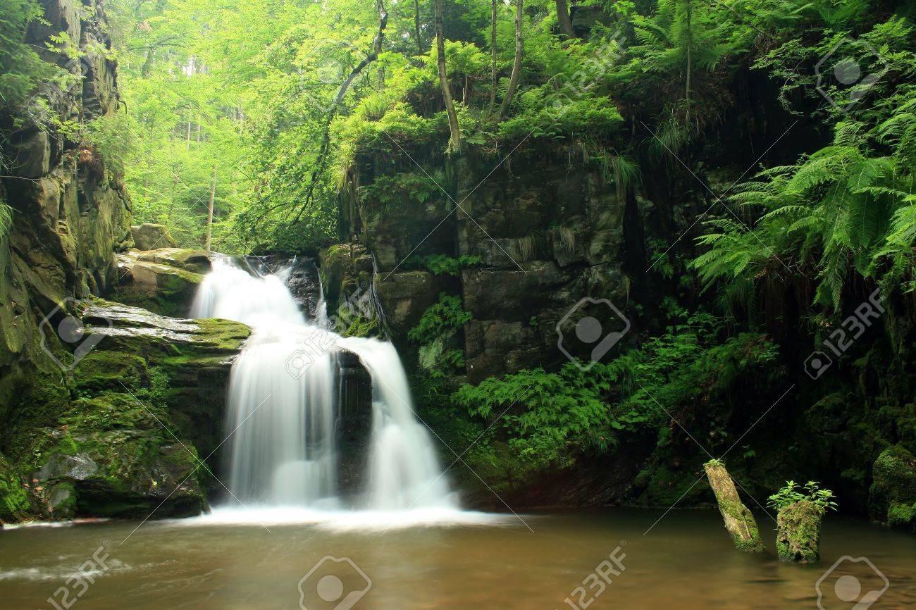 Waterfall in Jeseniky mountains in Czech Stock Photo - 3549591