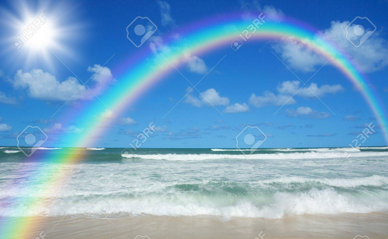 beach and sun Stock Photo - 9361003