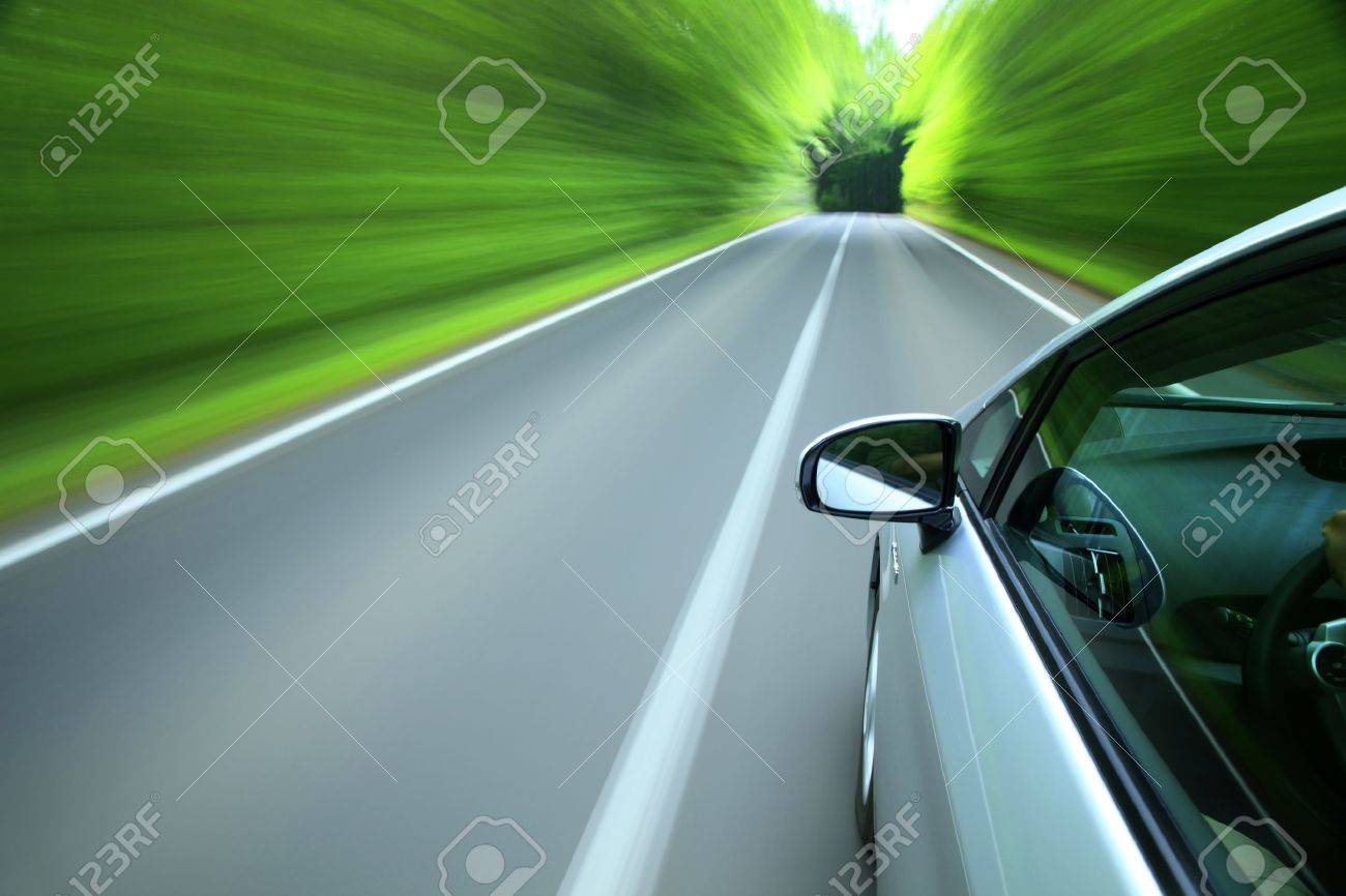 Driving into forest - 10945987