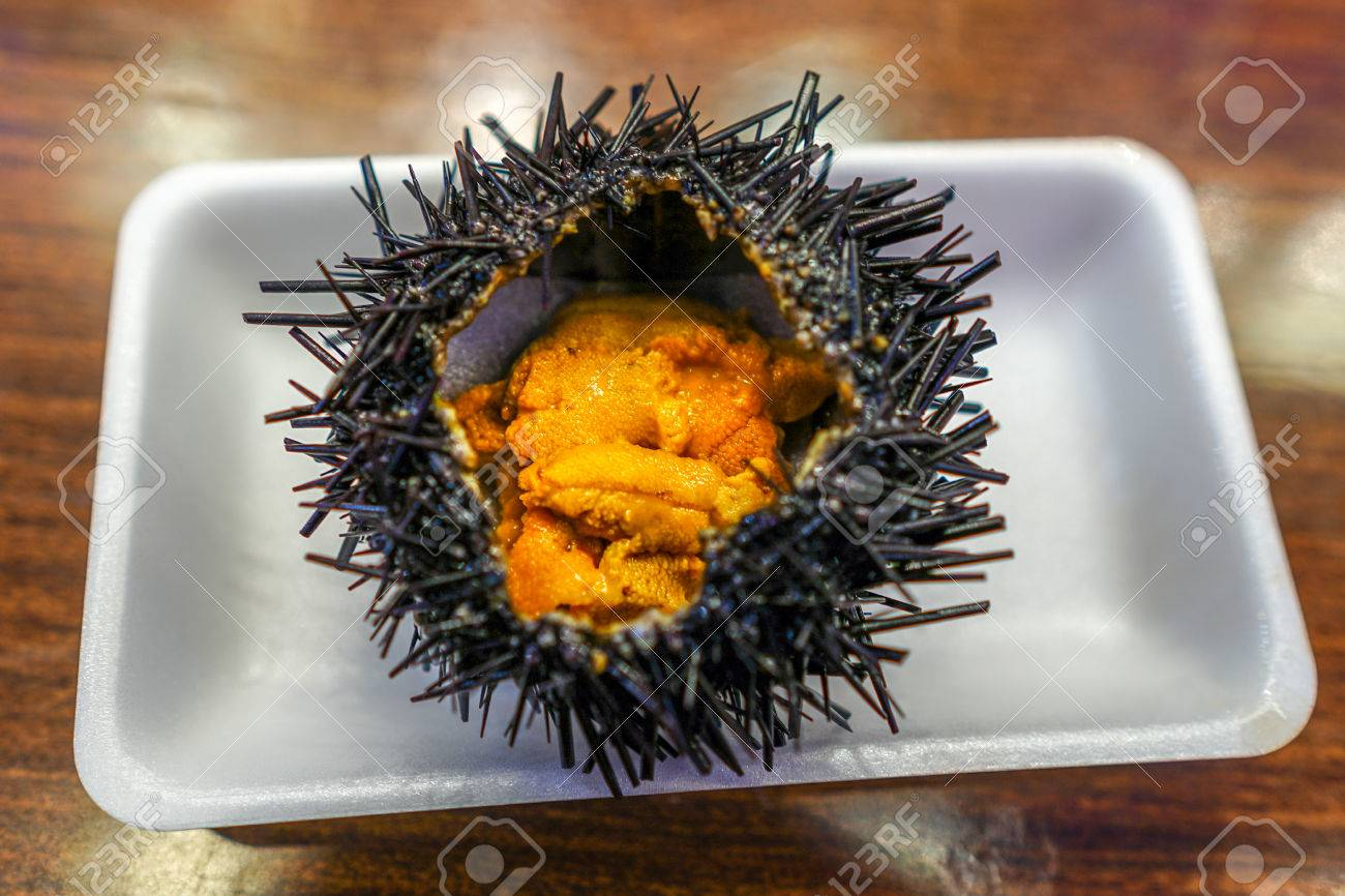 Japanese Food Fresh Sea Urchin Uni From The Local Market In