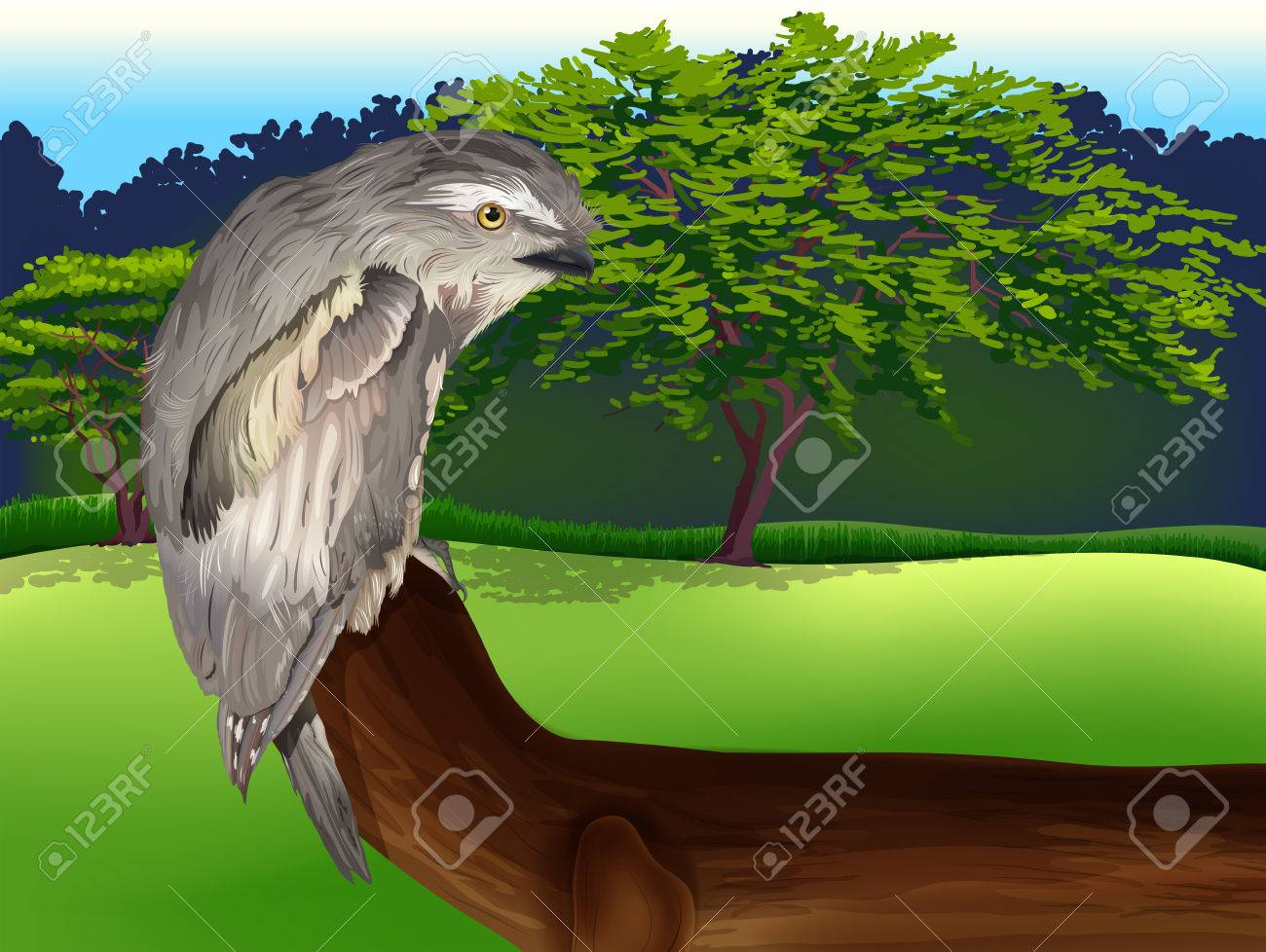 Illustration of a wild bird Stock Vector - 22605841