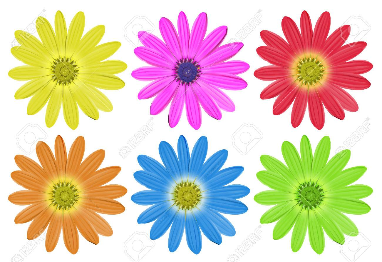 Set of colourful flowers on a white background royalty free cliparts set of colourful flowers on a white background stock vector 35581464 izmirmasajfo