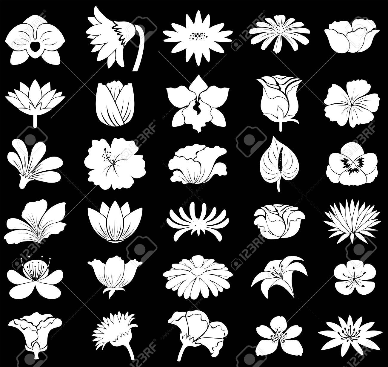 Collection of different types of flowers stock vector 38120315