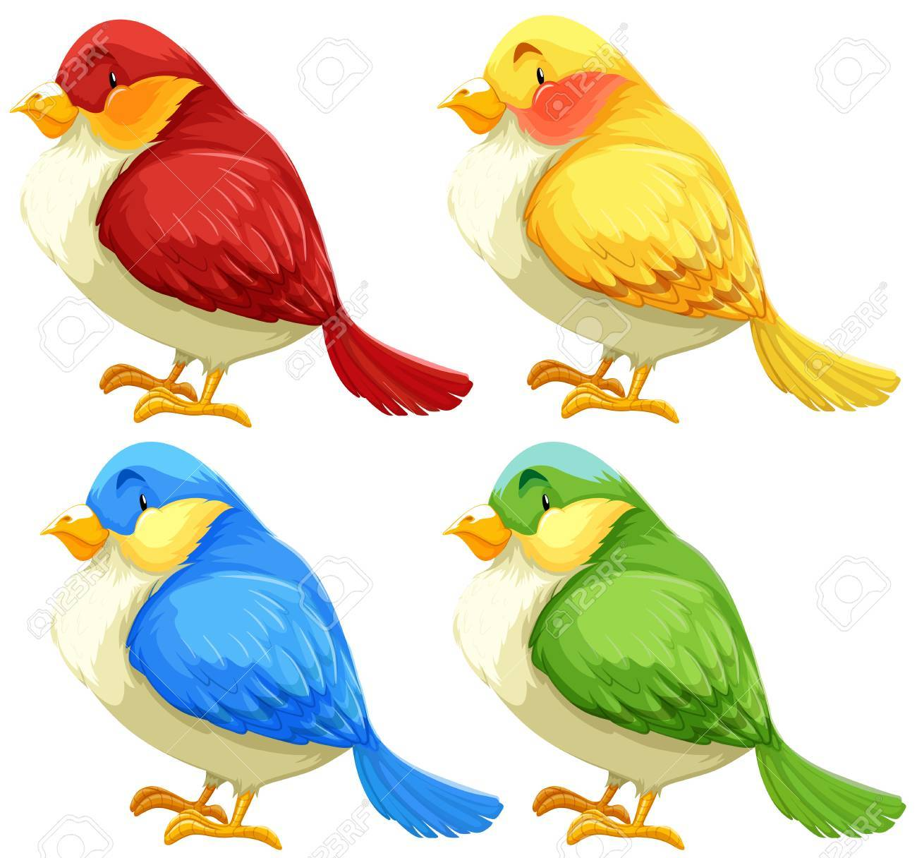 - Set Of Birds In Different Color Feathers Royalty Free Cliparts
