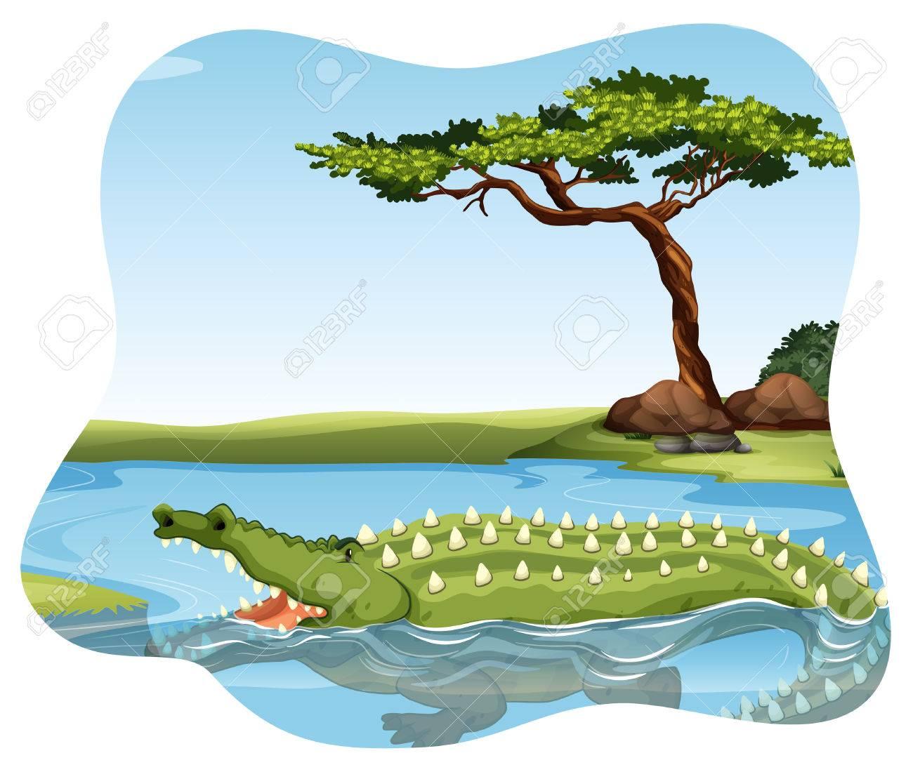 """Résultat de recherche d'images pour """"crocos baignade dessin"""""""