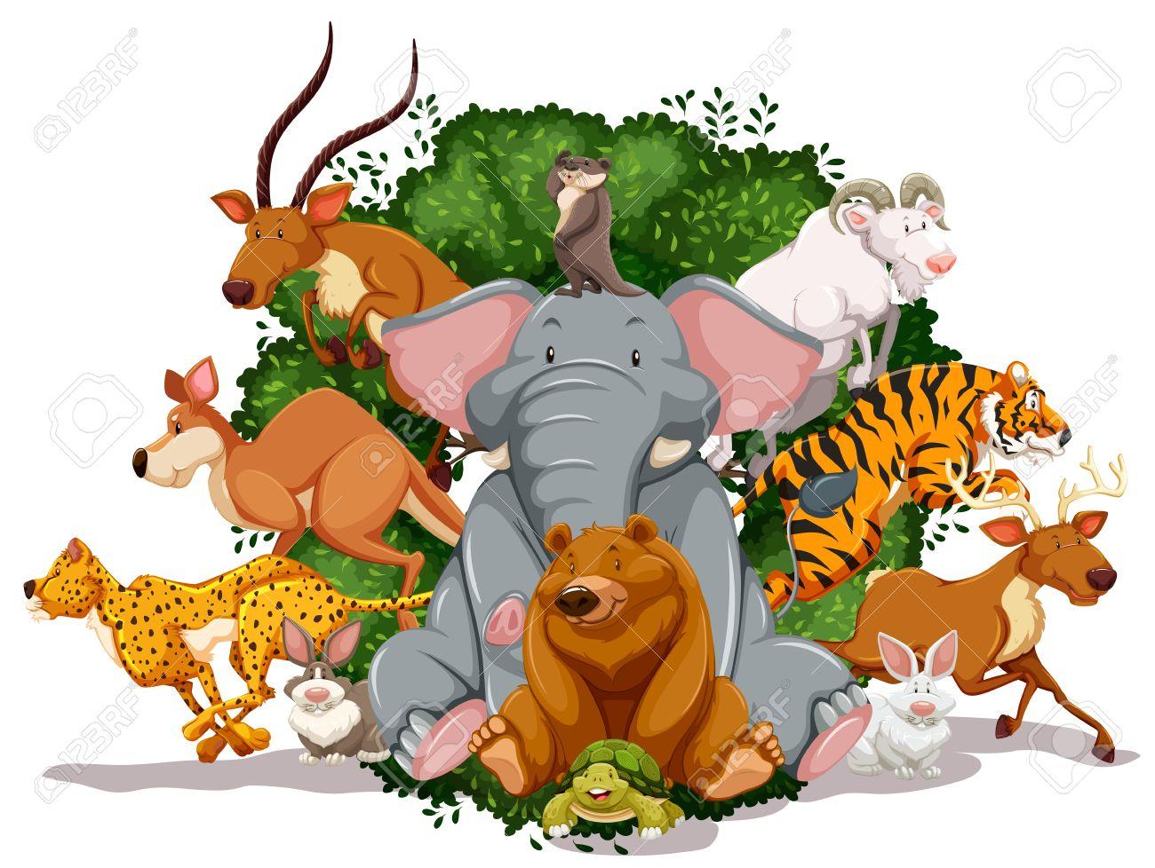 Afbeeldingsresultaat voor dieren tekening