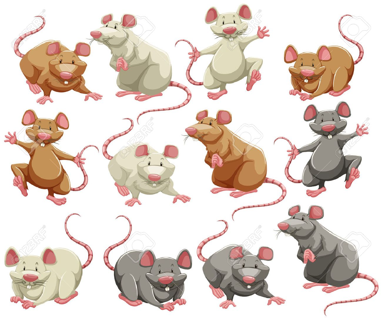 Mouse and rat in different colors Stock Vector - 42520083