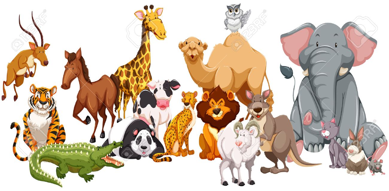 Different kind of wild animals illustration Stock Vector - 45062265