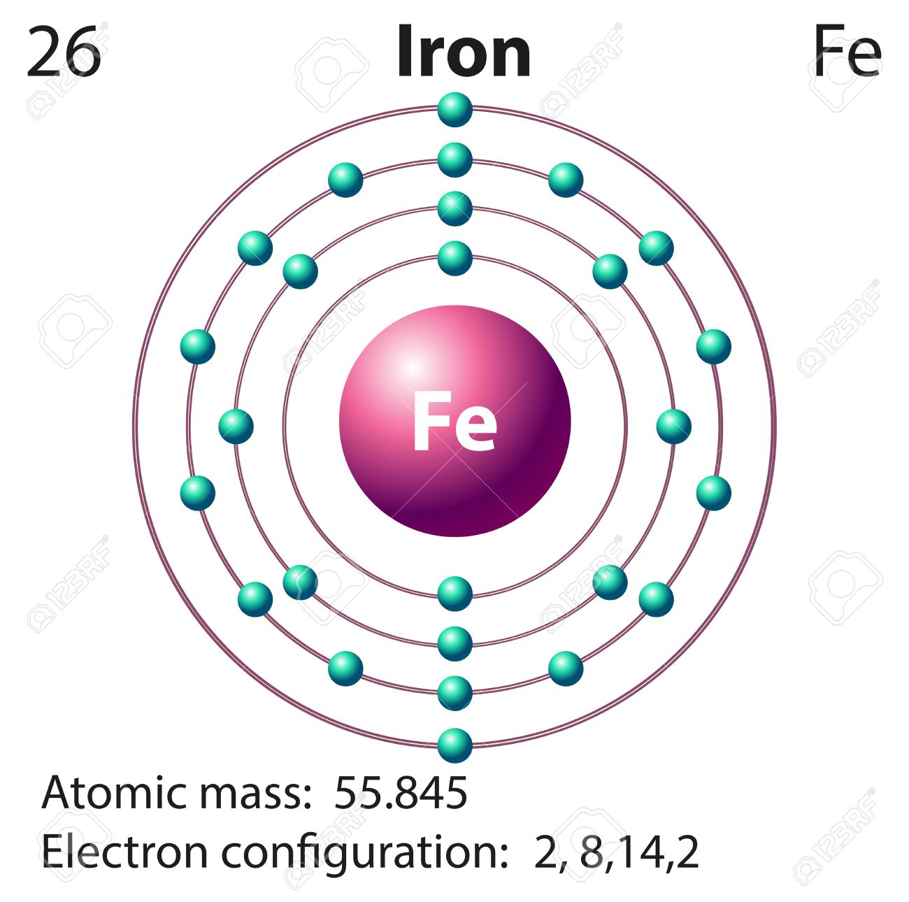 Flashcard of iron with atomic mass illustration royalty free flashcard of iron with atomic mass illustration stock vector 45062496 buycottarizona Image collections