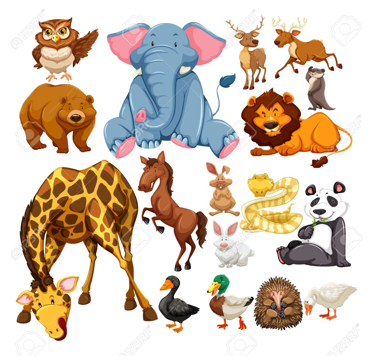 Wild Animals On White Illustration Royalty Free Cliparts, Vectors ...
