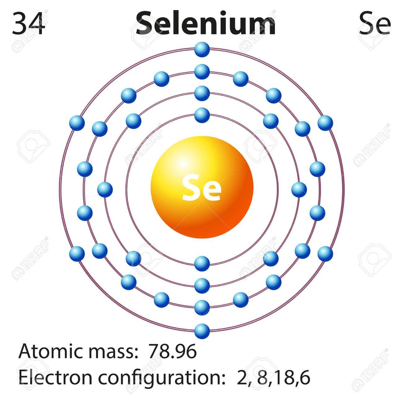 Symbol and electron diagram for selenium illustration royalty free symbol and electron diagram for selenium illustration stock vector 45866232 pooptronica