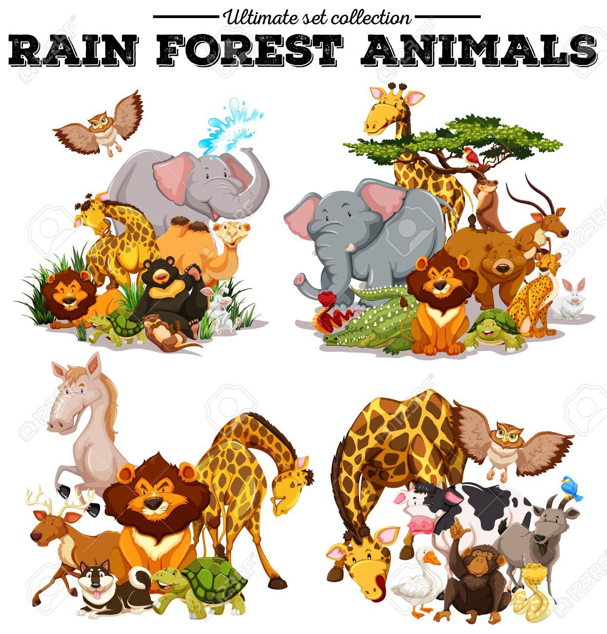 熱帯雨林の動物イラストの種類 ロイヤリティフリークリップアート