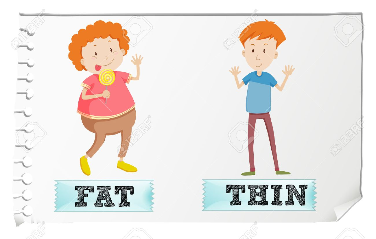 opposite adjectives fat and thin illustration royalty free cliparts