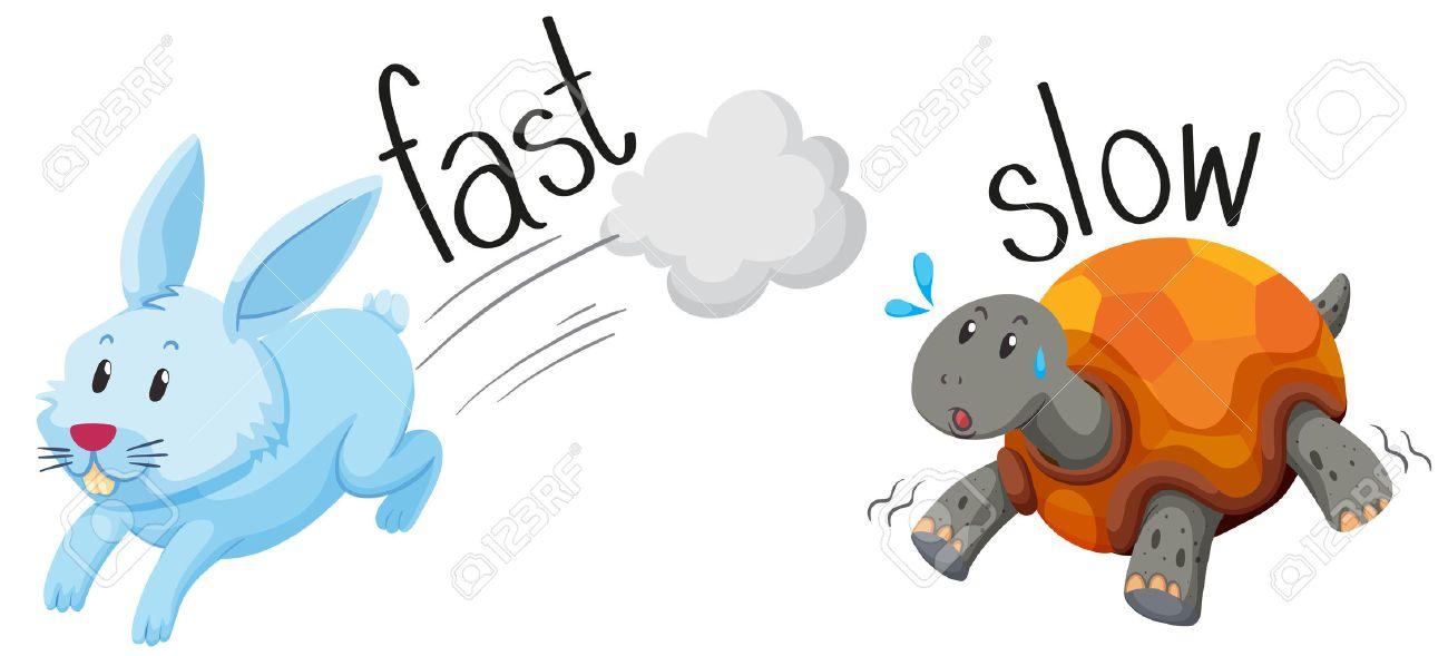 Rabbit runs fast and turtle runs slow illustration - 49391746