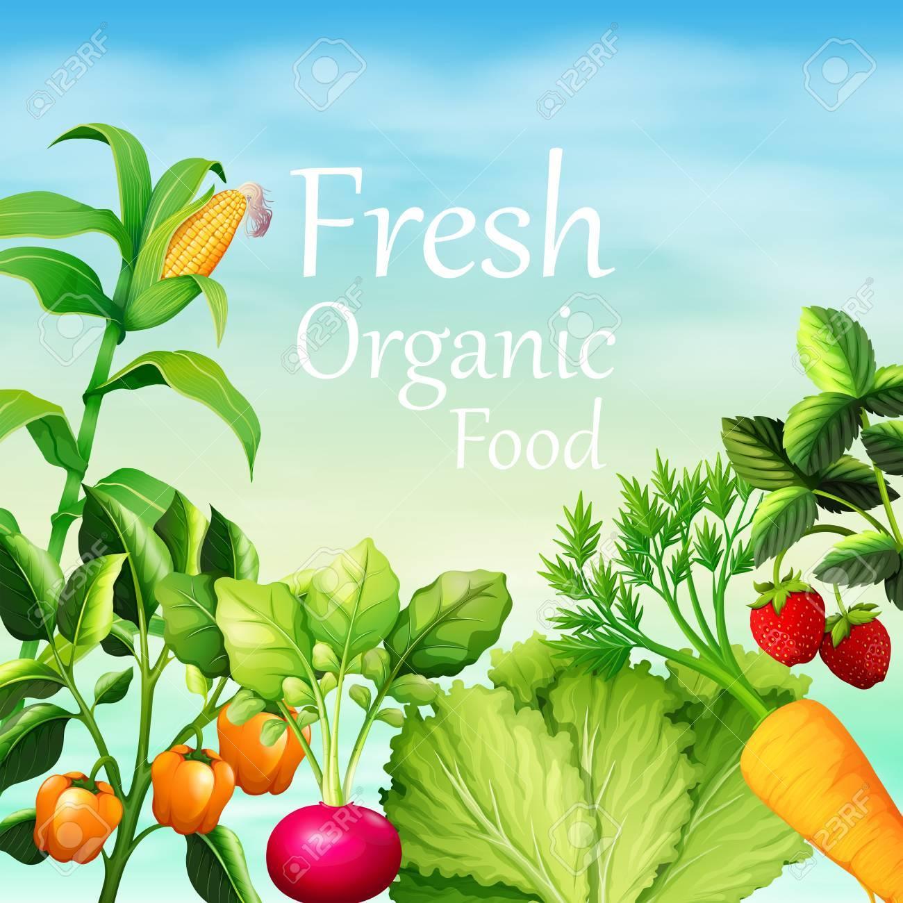 多くの野菜イラスト ポスター デザインのイラスト素材ベクタ Image