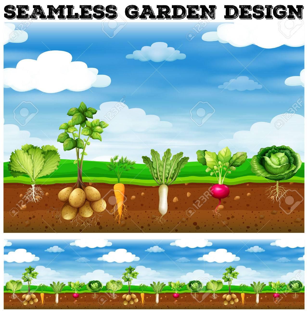 Different kind of vegetables in the garden illustration - 50176569