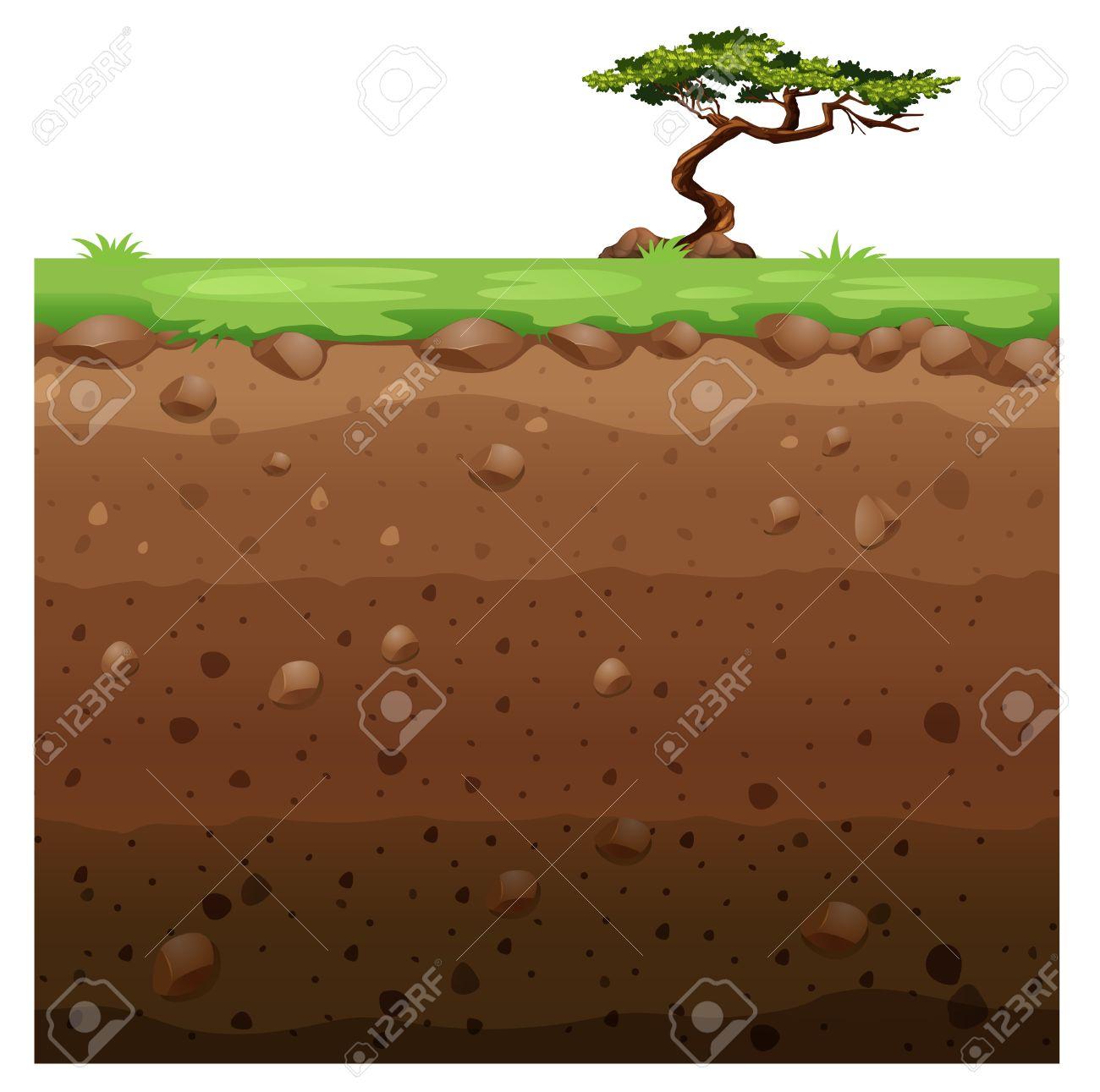 Single tree on surface and underground scene illustration - 50176484