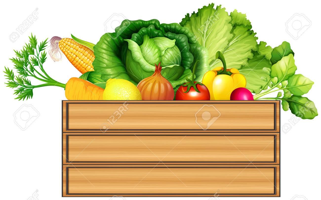 Fresh vegetables in the box illustration - 51442192