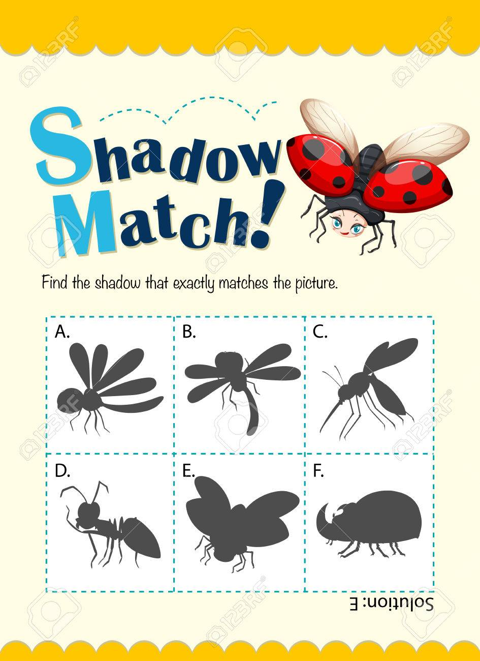 Plantilla Juego Para Los Insectos Que Coinciden Con La Ilustración ...