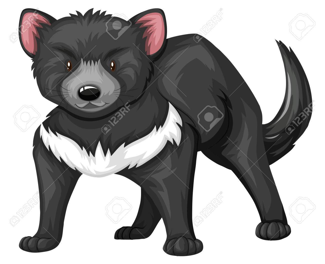 tasmanian devil with black fur illustration royalty free cliparts rh 123rf com Tasmanian Devil Graphics tasmanian devil clipart free