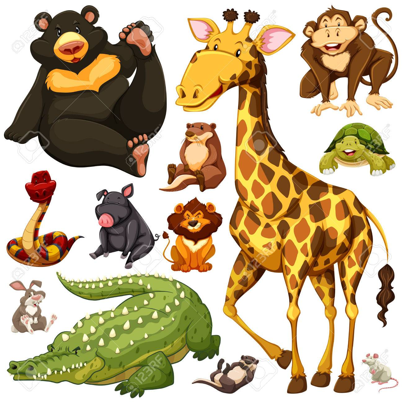 Different Types Of Wild Animals Illustration Royalty Free Cliparts ...