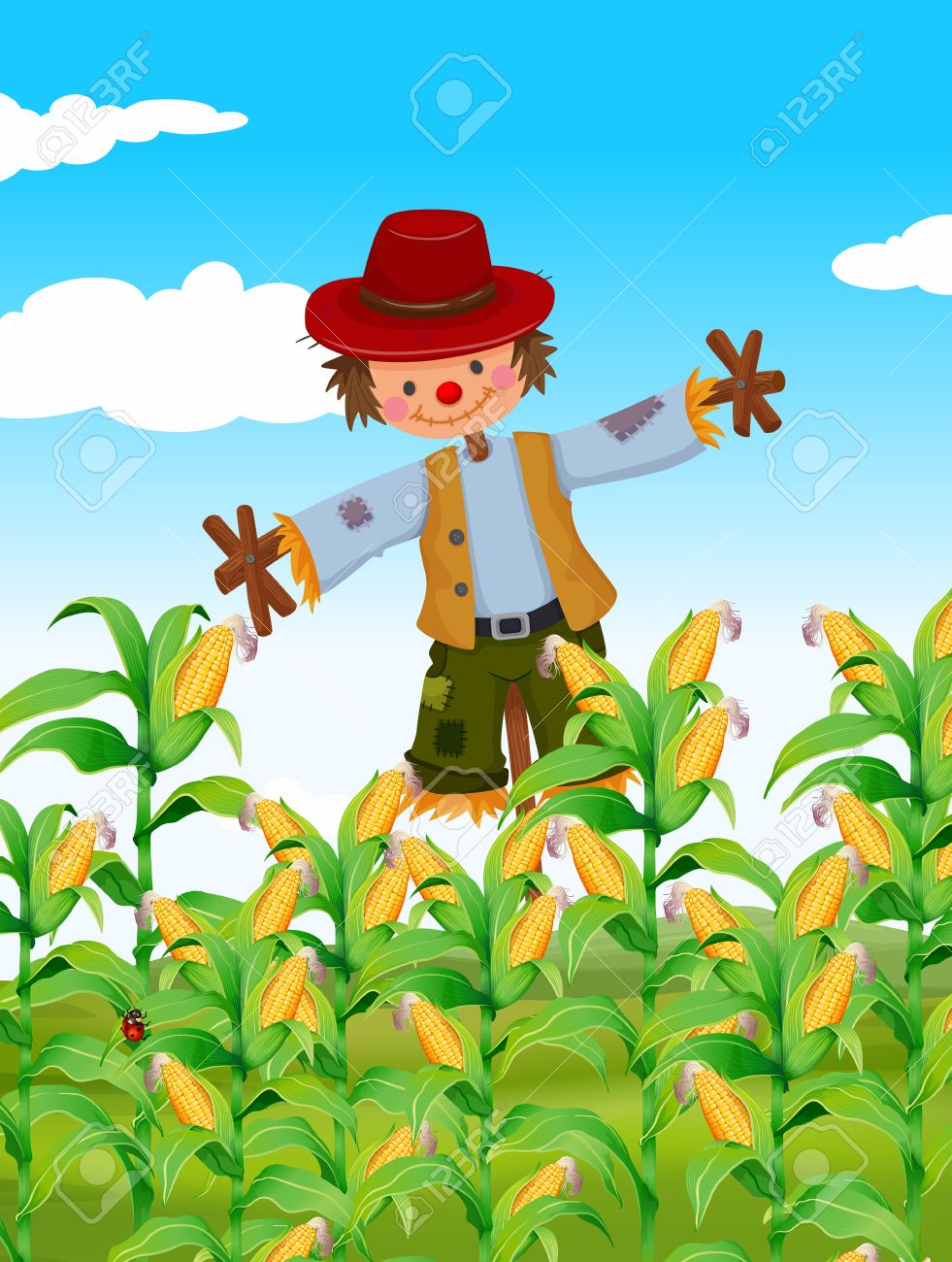scarecrow standing in corn field illustration royalty free cliparts rh 123rf com Corn Field Drawing corn field clipart black and white