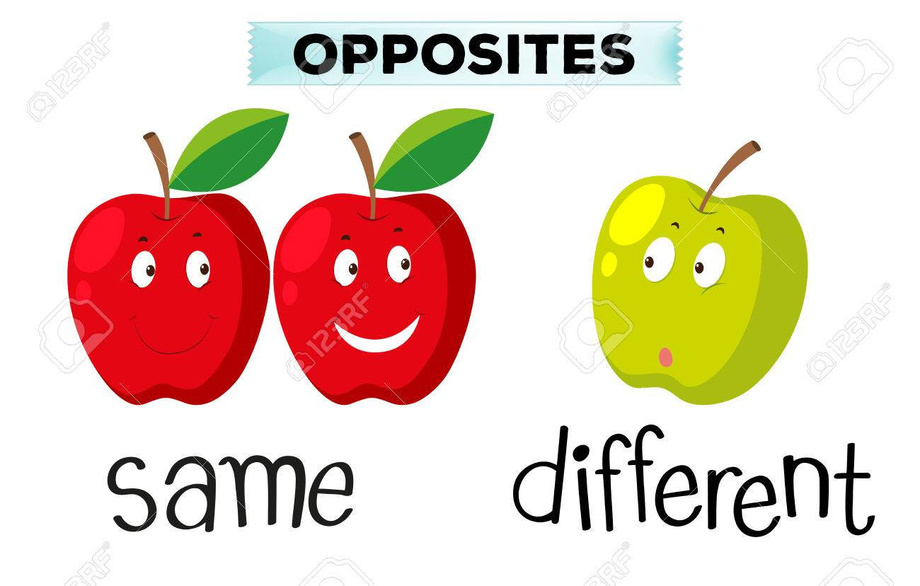 c1fcef7f3007 Opposite words for same and different illustration Stock Vector - 70646463