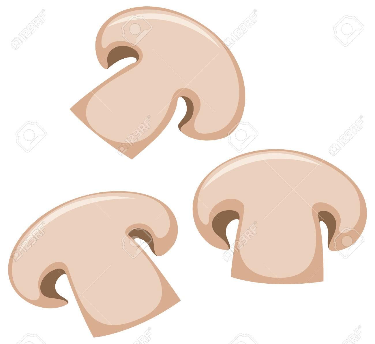 Astounding Mushroom Slices On White Background Illustration Download Free Architecture Designs Estepponolmadebymaigaardcom