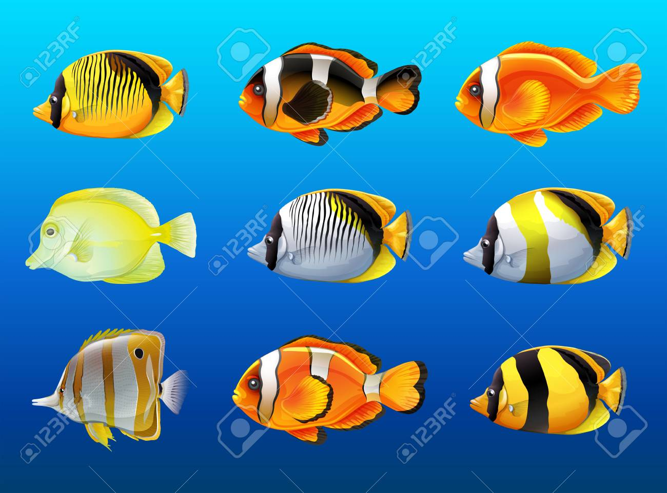 Different kinds of fish under the ocean illustration Stock Vector - 77514944