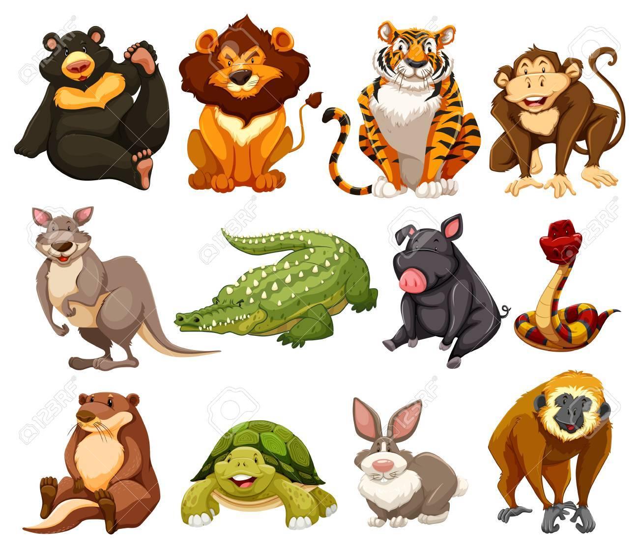 ジャングルの動物のイラストの種類 ロイヤリティフリークリップアート