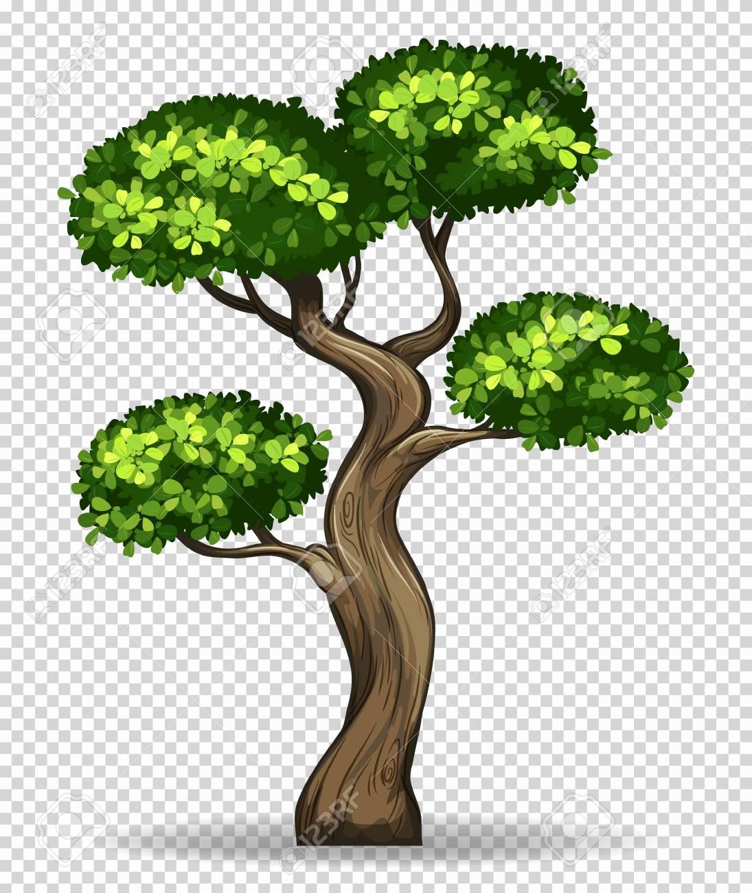Png Clipart Clip Art Tree Transparent Backgroun