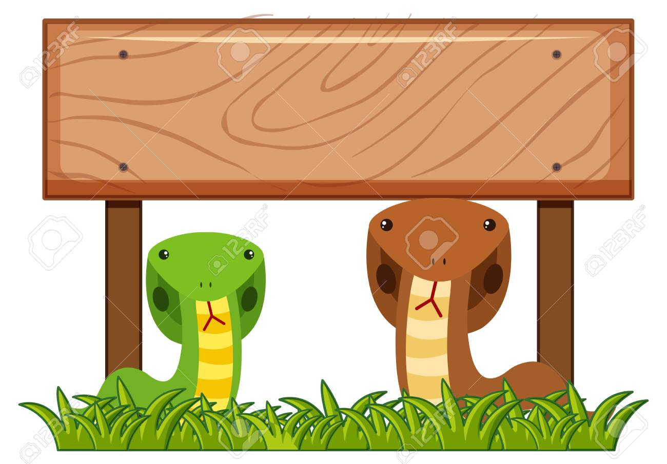 wooden sign template with two snakes underneath illustration royalty