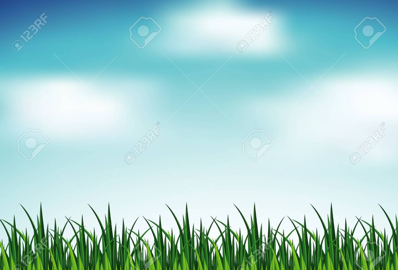 Background scene with green grass and blue sky illustration - 138008679